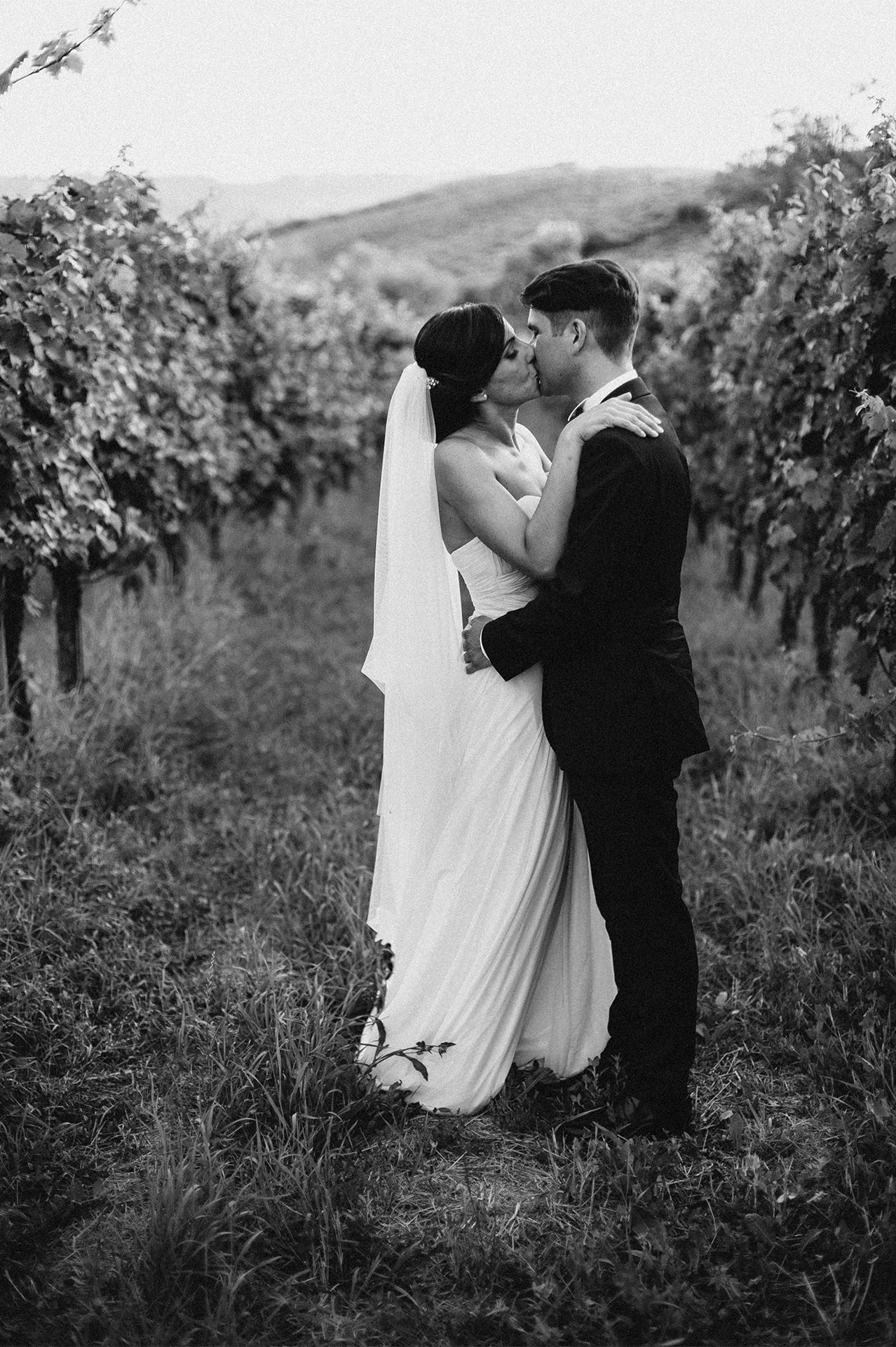 sposi si baciano tra gli ulivi