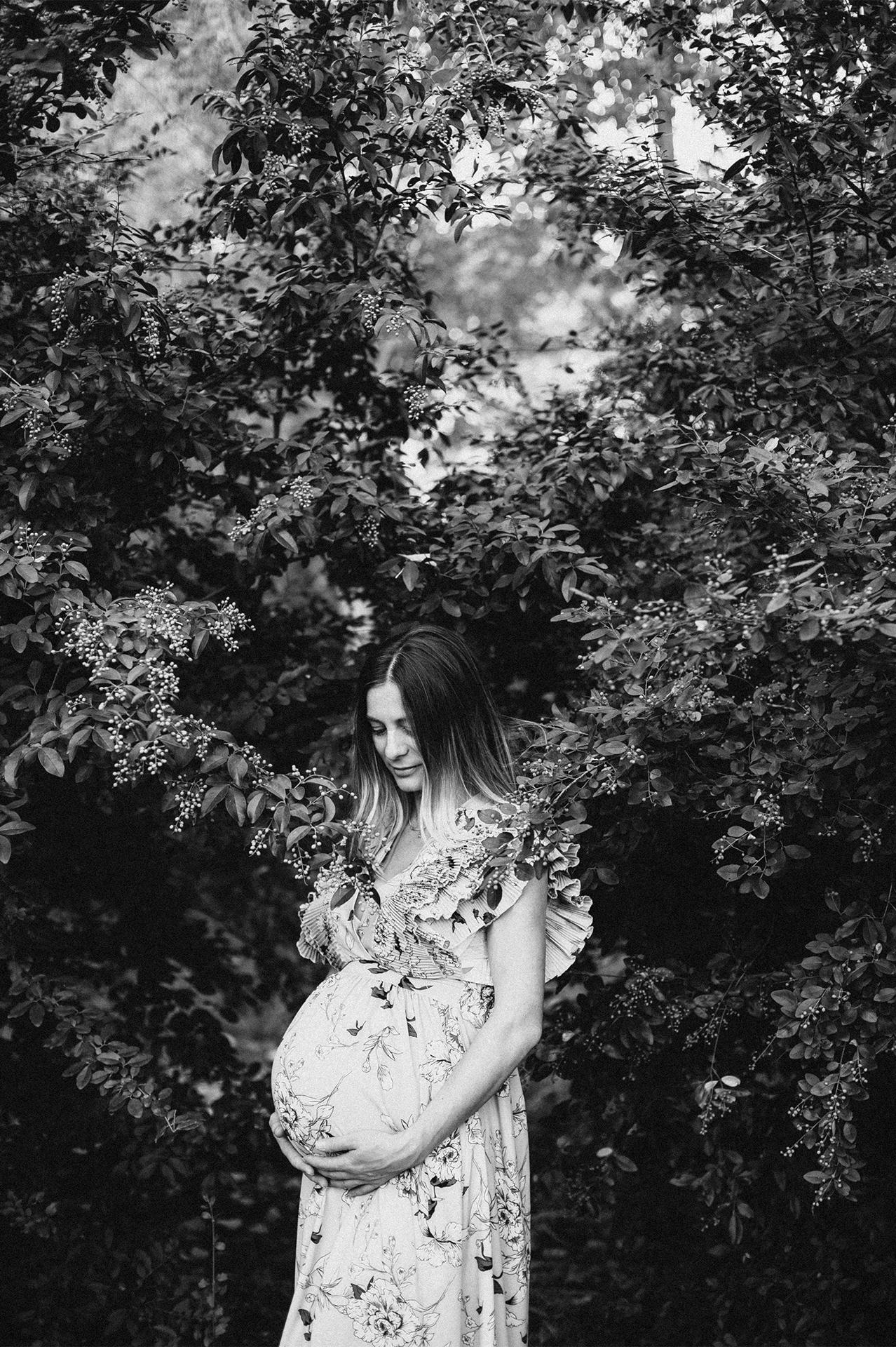 donna incinta tra gli ulivi